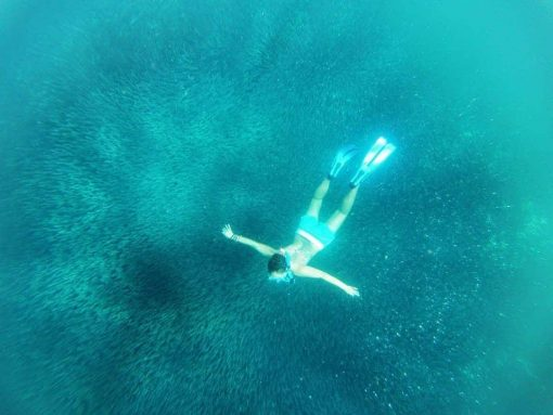 Snorkelling in the Philippines.