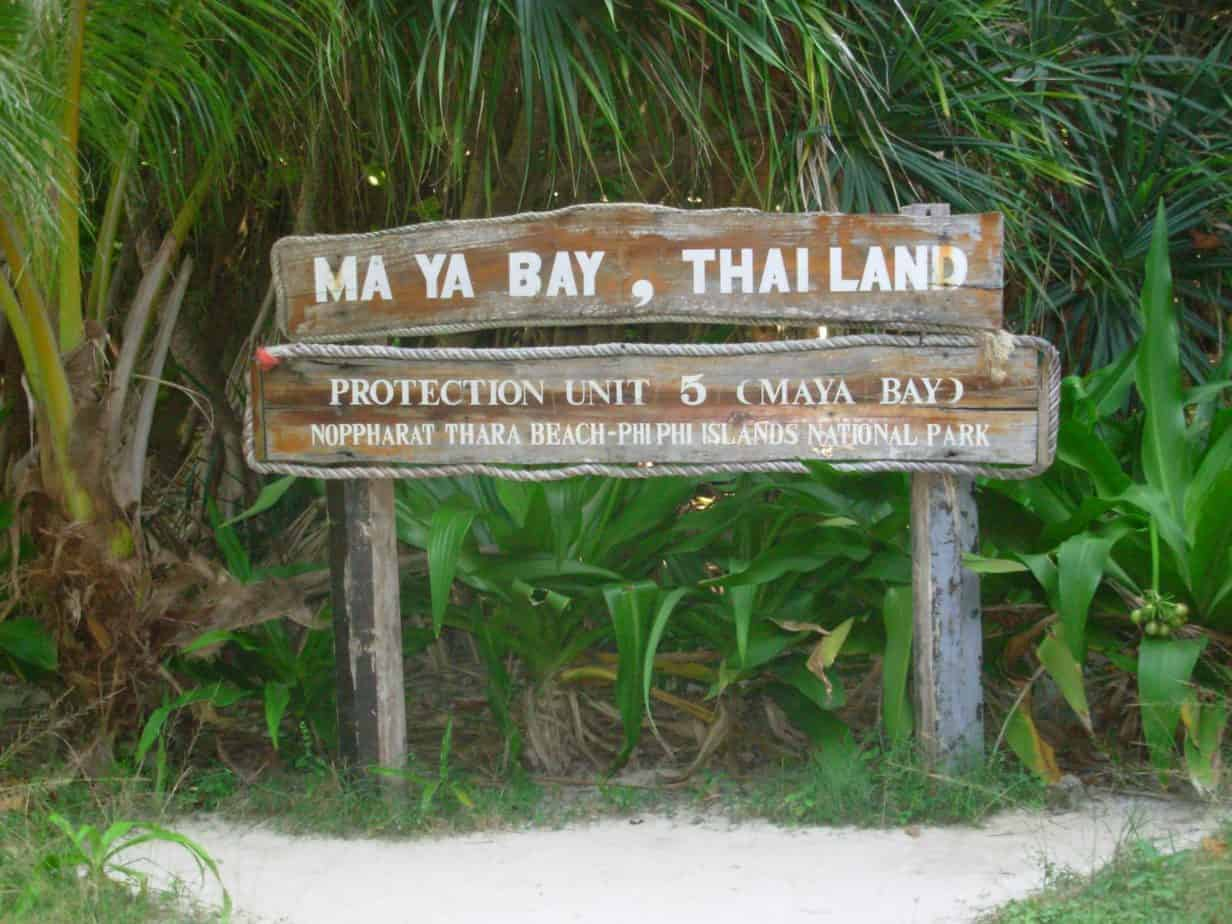 The infamous Maya Bay receives 4,000+ visitors/day.