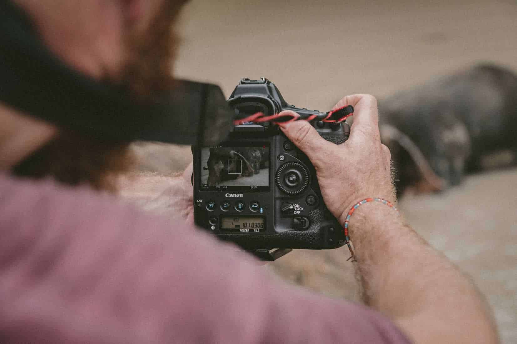 A man takes a photo of a dog with a DSLR camera.