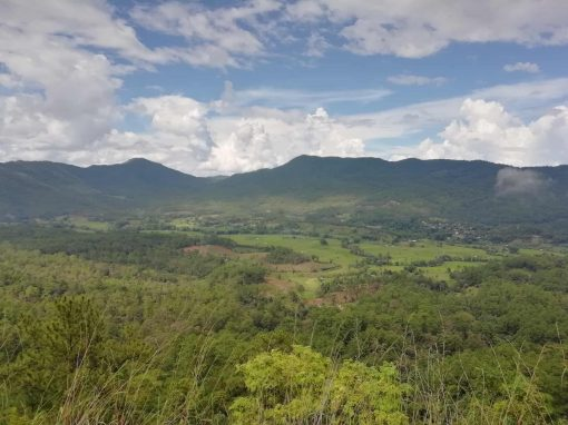 Views of the mountain scenery whilst hiking in Doi Inthanon National Park.