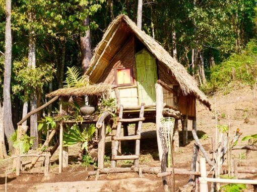 The rustic camping huts in Doi Inthanon National Park.