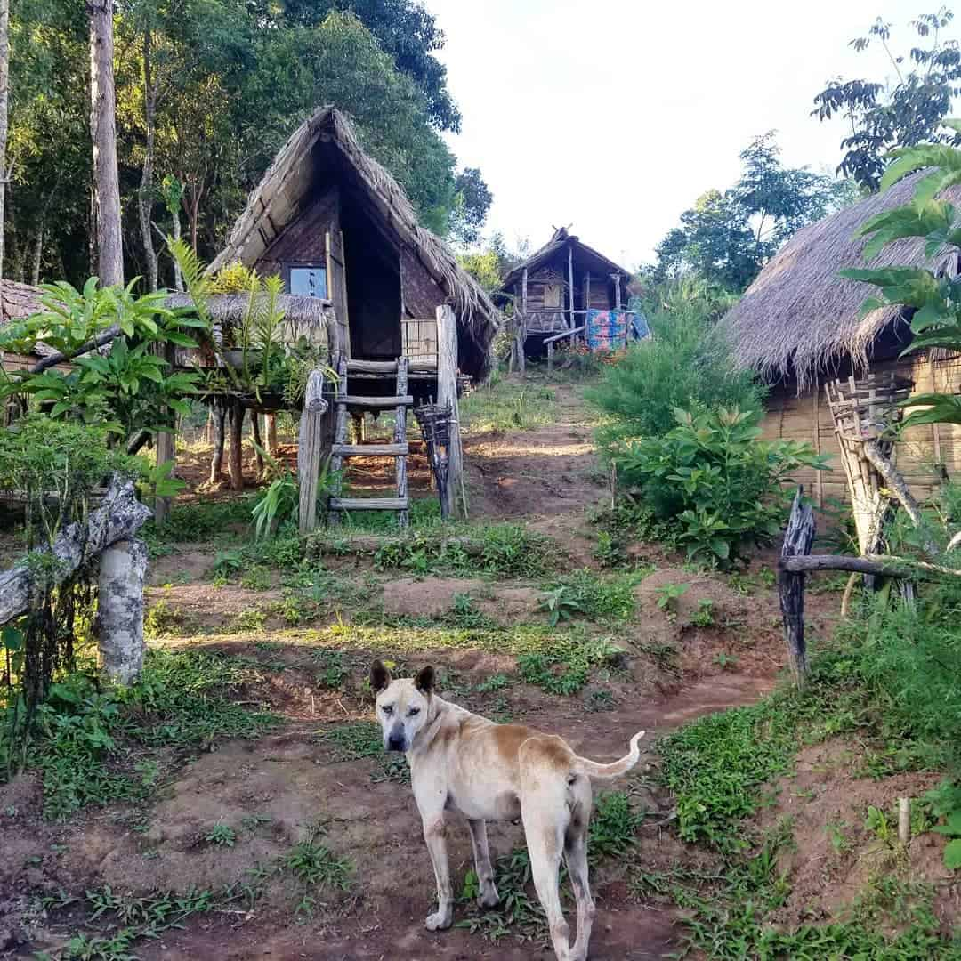 A simple homestay in Doi Inthanon, Thailand.