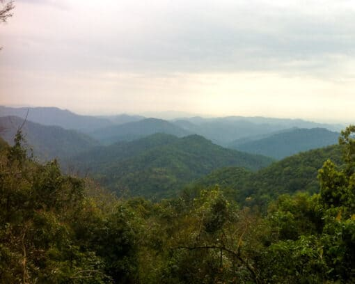 Views of national protected area