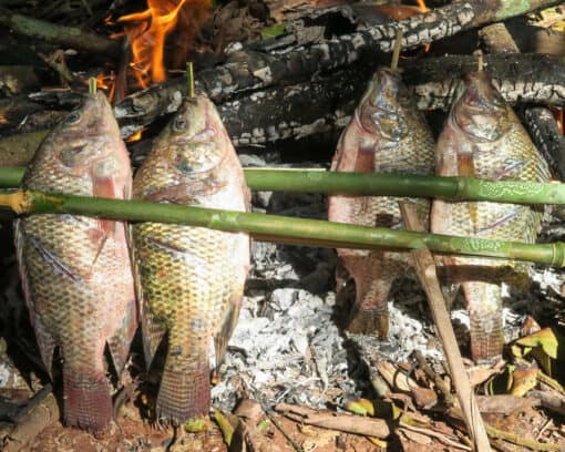 Fish cooking in flames