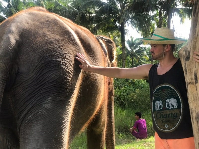 A Backpacker in a Chang Vest Pets an Elephant