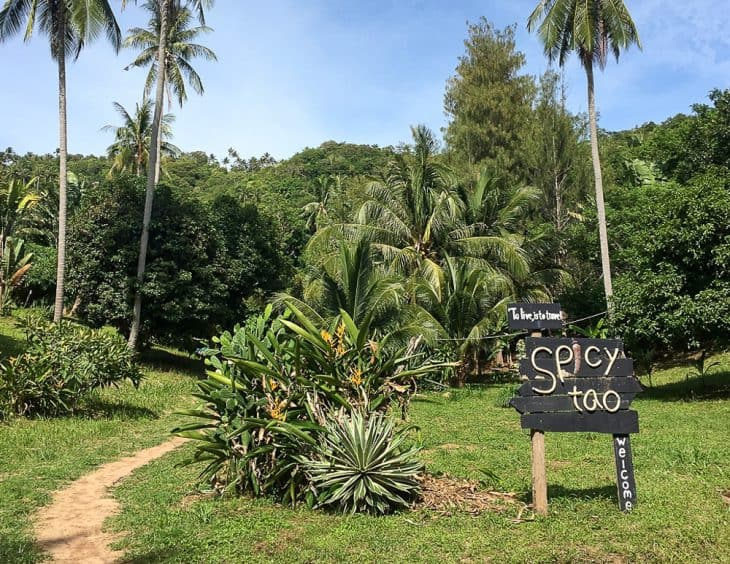 SpicyTao Backpackers sign