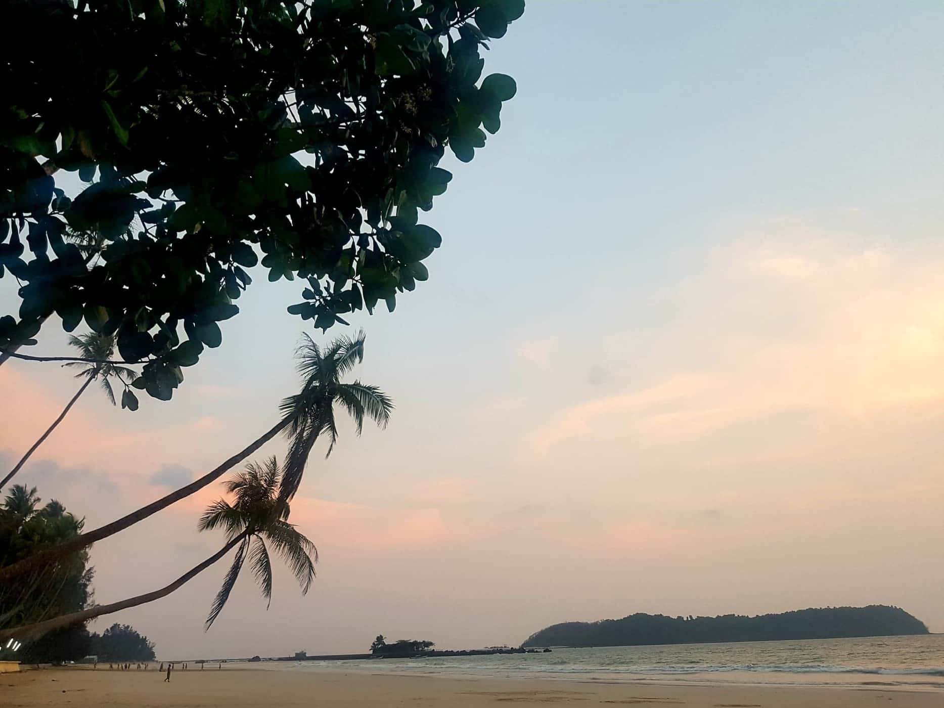 The uber Instagrammable hanging palm trees and sunset over Ngapali Beach, Myanmar