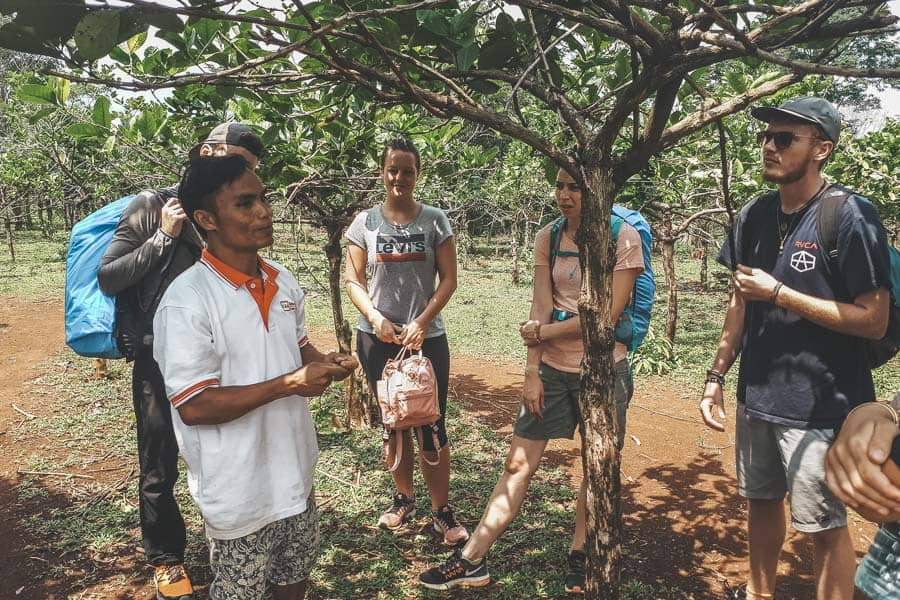 A coffee tour in the Bolaven Plateau