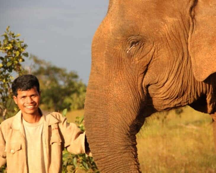 Local man and elephant