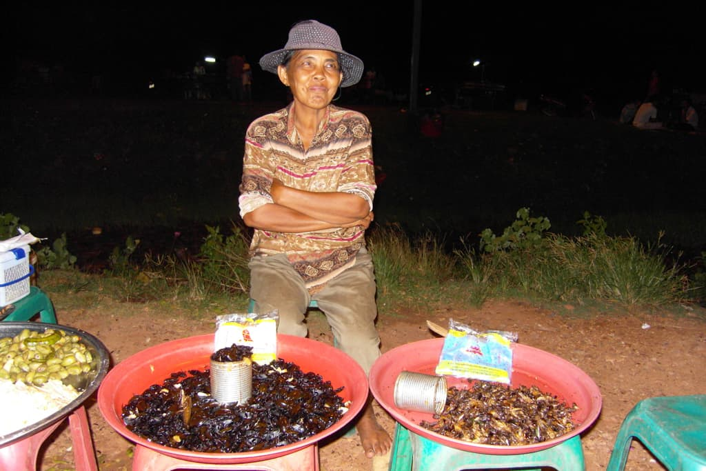 Lady selling insects in Cambodia