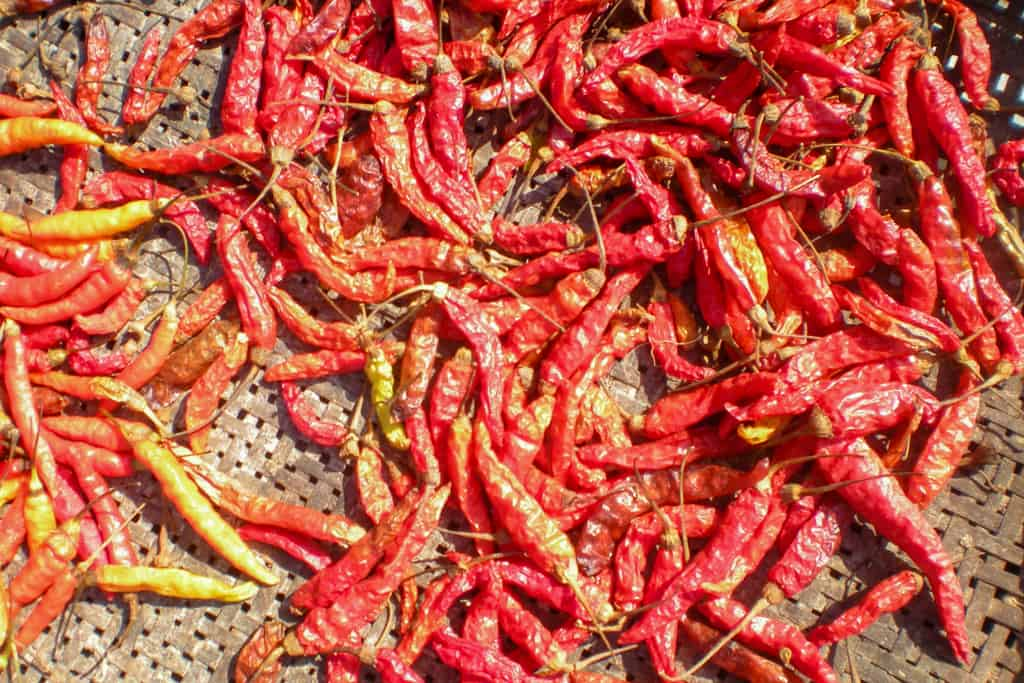 Thai Chili: If It's Not Spicy, It's Not Tasty!