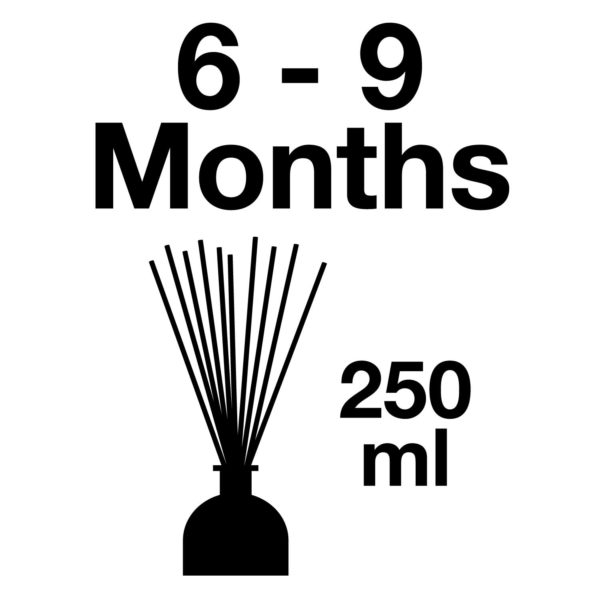 Pairfum Infographic Reed Diffuser 250 Ml Longlasting