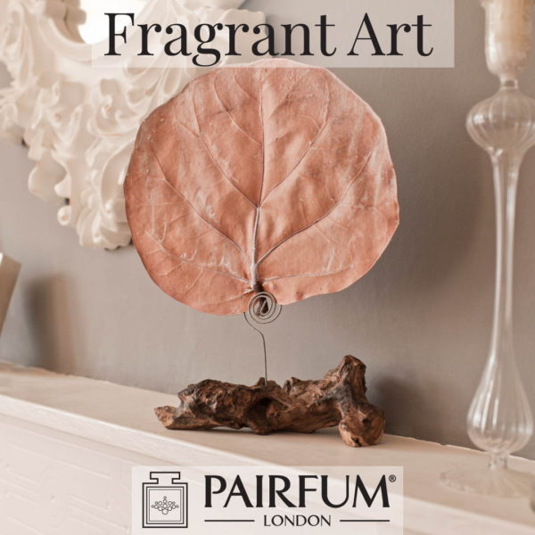 Canopy Infusion Fragrant Art Pairfum London