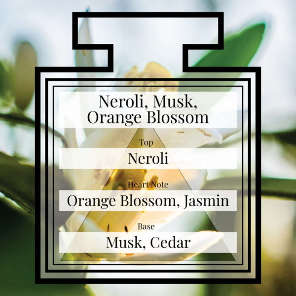 Pairfum Fragrance Neroli Musk Orange Blossom Triangle