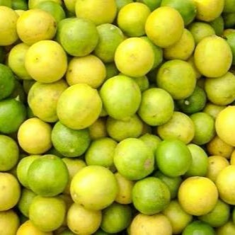 BingoFresh Premium Lemon (Cheru Naranga)
