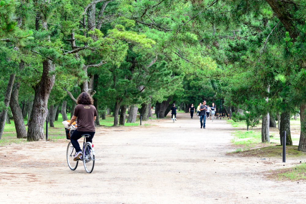 Rent a Bike and Cycle All 3.6km of Amanohashidate 2.jpg Rent a Bike and Cycle All 3.6km of Amanohashidate