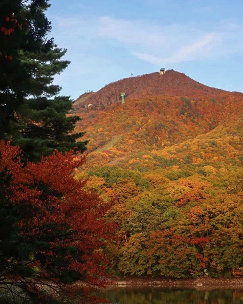 Zao Onsen – Take the Ropeway Up Zao Mountain in Autumn