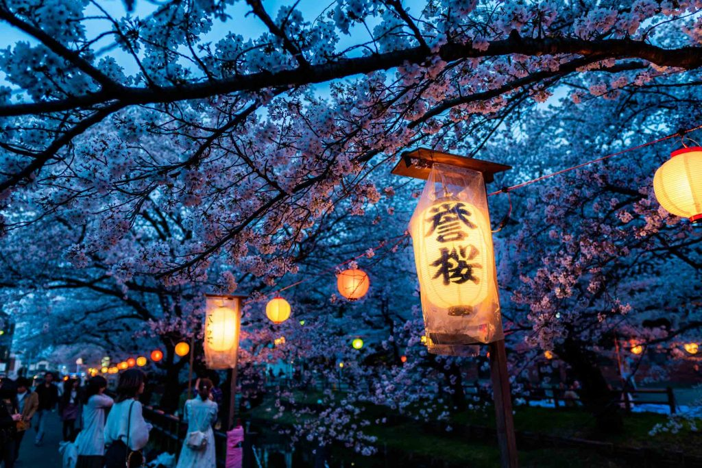 Sakura Tokyo - The 10 Best Cherry Blossom Spots You Need To Visit 1