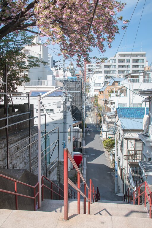 Japan Cleanness Streets