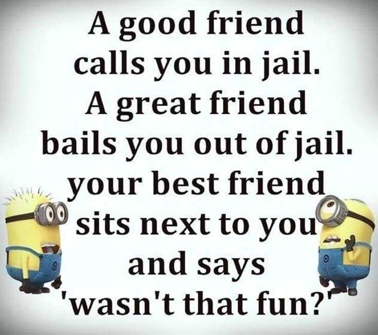 37 Funny Quotes And Sayings About Funny Memes Tailpic