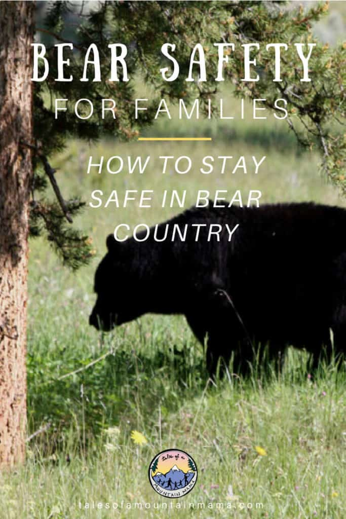 Bear safety for families
