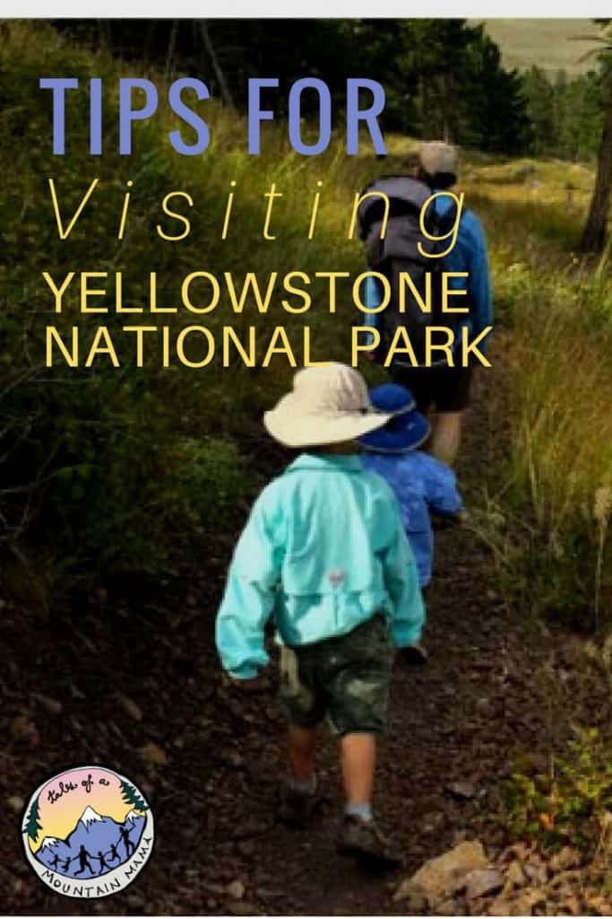 tips for visiting Yellowstone