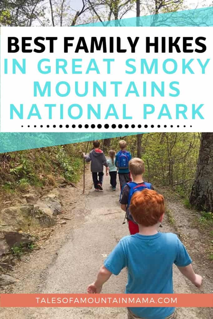 Best Family Hikes in the Great Smoky Mountains