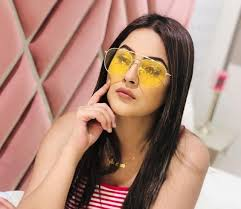 SHEHNAAZ GILL: Bigg Boss 13 Wiki/Biography, Age, Relationships, Career
