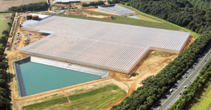 Building of one of UK's biggest greenhouses is almost complete