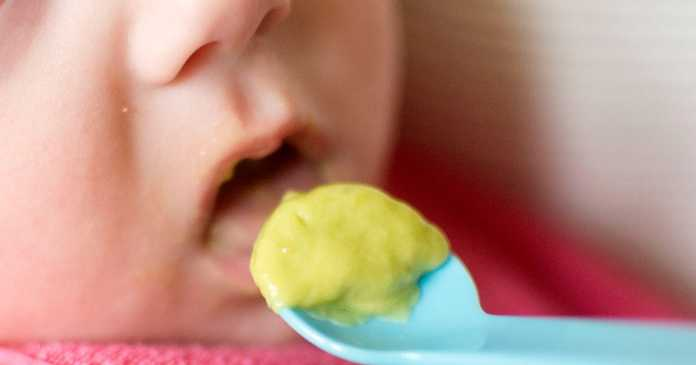 The cereal experts say could prevent wheat allergies in babies