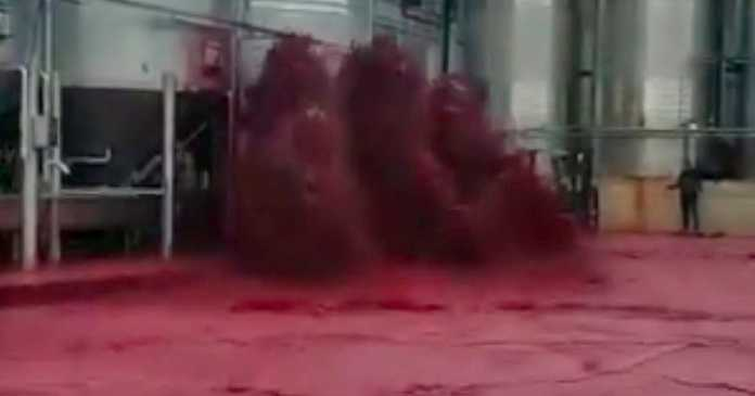 Winery tank bursts forcing 50,000 litres of red wine gushing into street