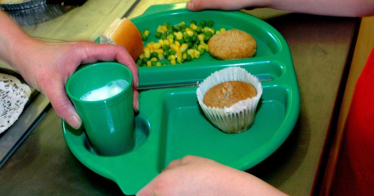 MP's office garden covered in empty plates in school meals protest