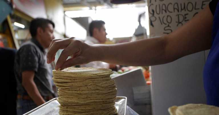 Mexico importing tortillas? Farmers fear cuts will hit harvests