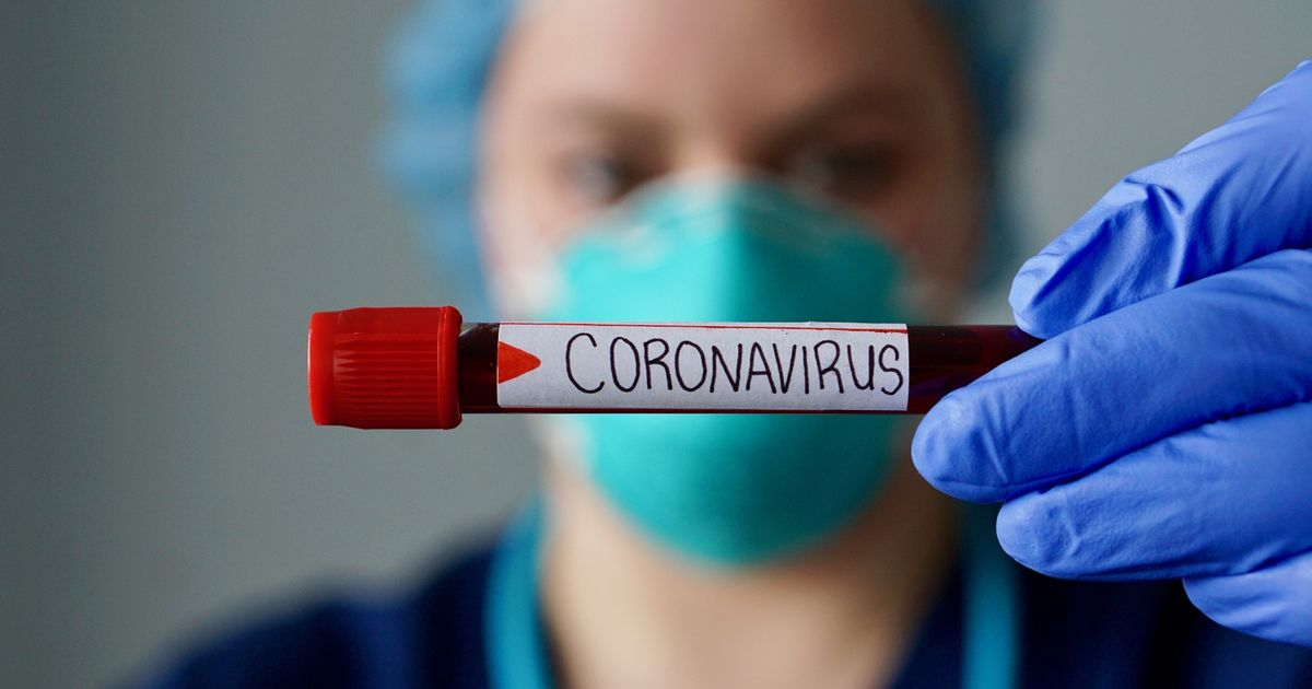 New way of seeing immune response to Covid at molecular level
