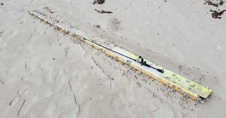 Search for MH370 takes new twist as 'debris washes up on Queensland beach'