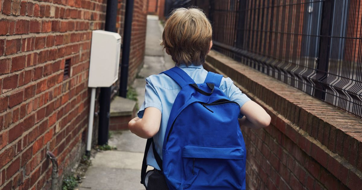 Sick trio roar at schoolboy to 'get in the car' in botched lunchtime abduction