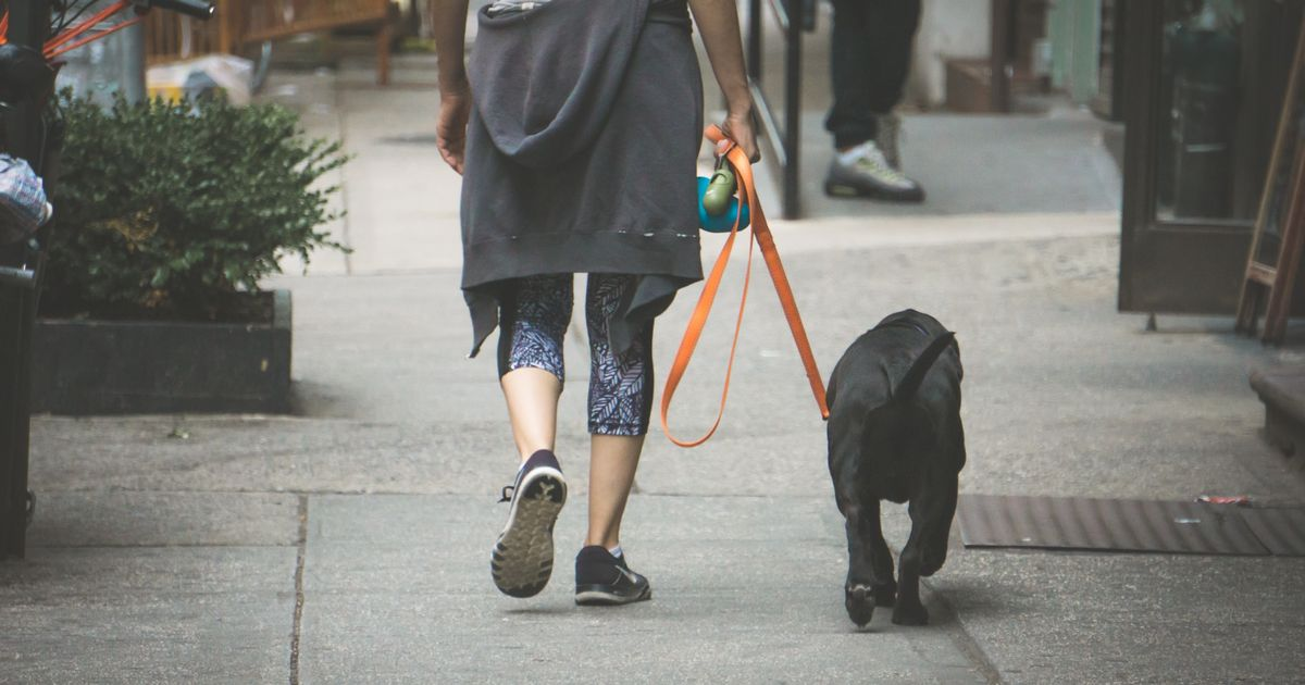Activities that increase risk of catching Covid include dog walking