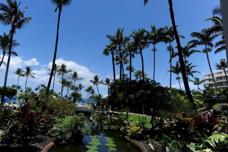 California lawmakers head to Maui with lobbyists despite pandemic, travel warnings