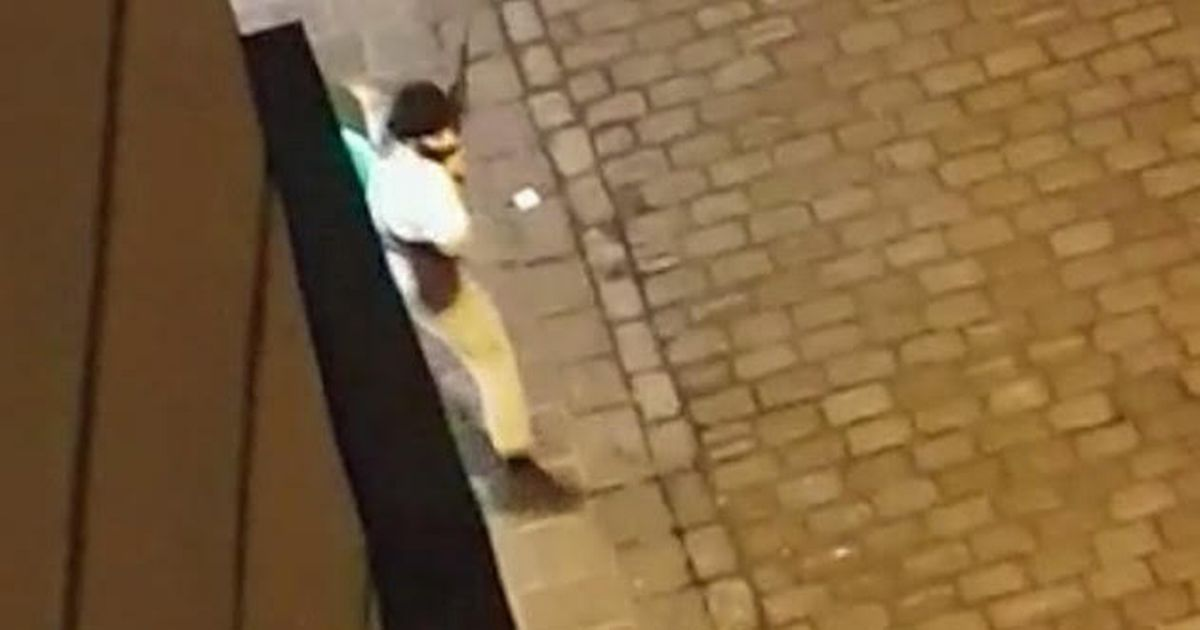 Everything we know after four killed in chilling terror attack in Vienna