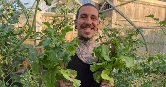 Man hasn't been to the supermarket in 8 months after growing veg at home