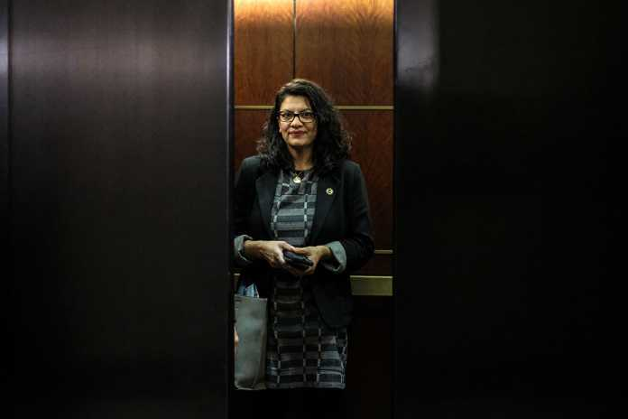 Tlaib lashes out at centrist Dems over election debacle: 'I can't be silent'