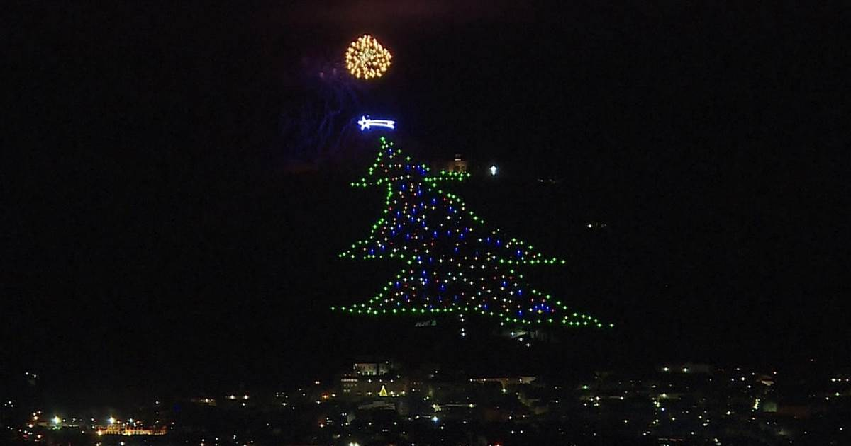 Italy lights up world's largest Christmas tree