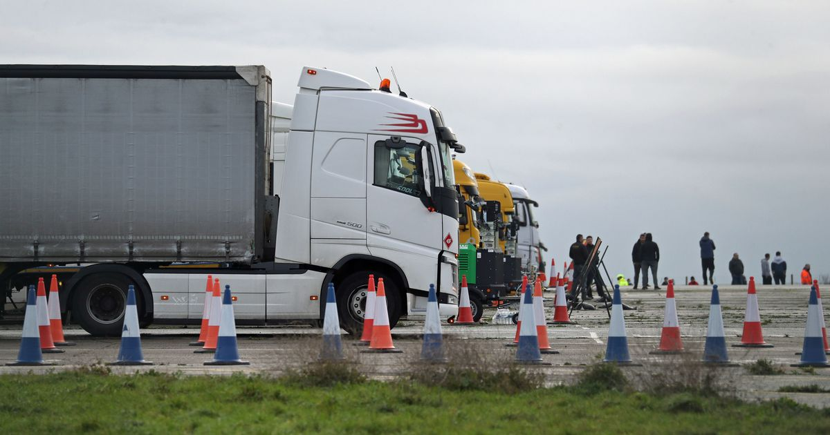 Mass testing programme for HGV drivers planned following France agreement