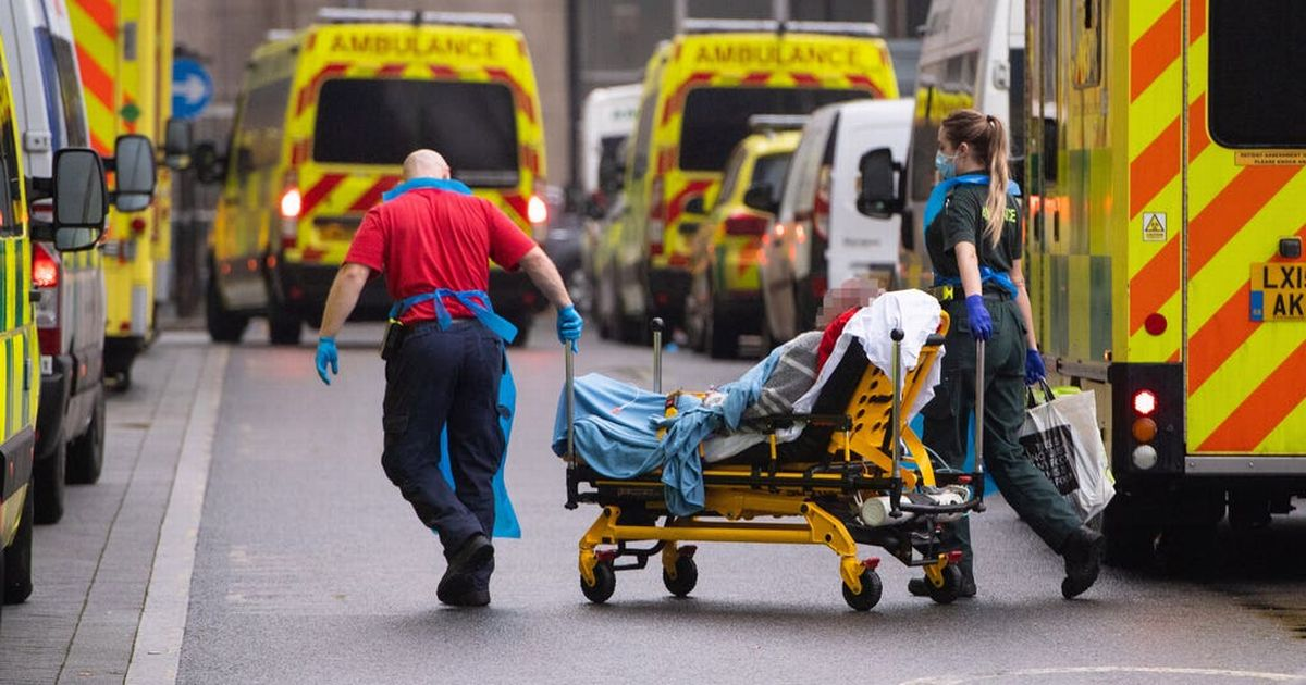 Doctors want law to protect them from Covid 'unlawful killing' cases
