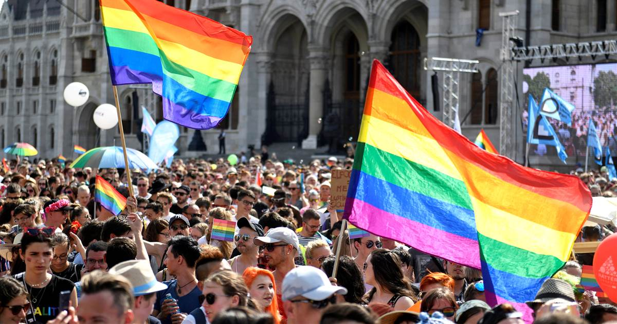 Hungary's government orders disclaimers on books with gay content