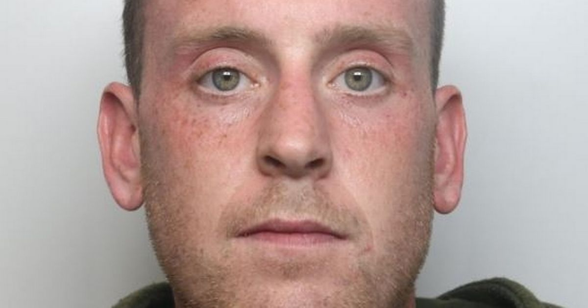 Man chopped up his landlord and fed him to badgers