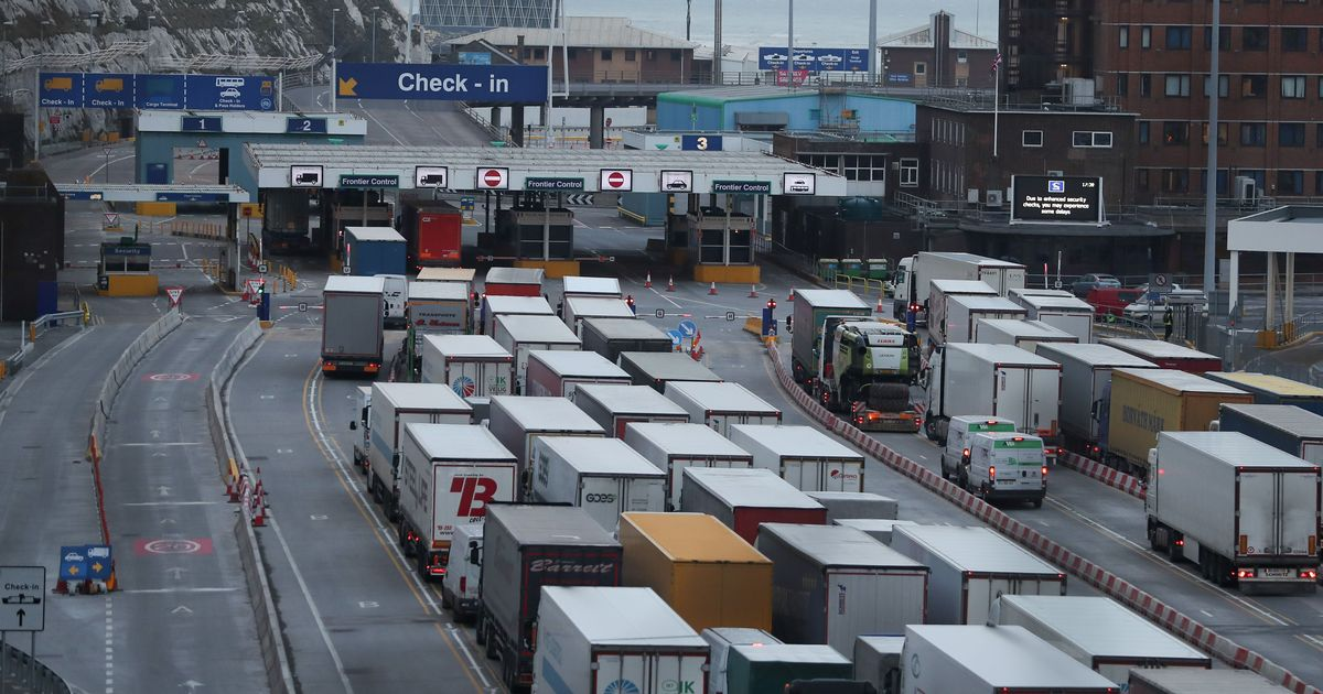 Nearly 200 UK lorries blocked from entering EU 'every day'