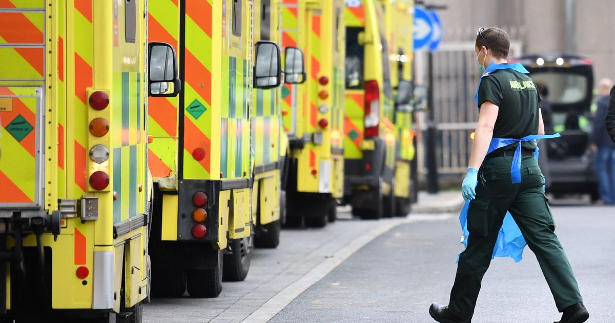 Study suggests people dying as ambulance crews stuck at hospitals
