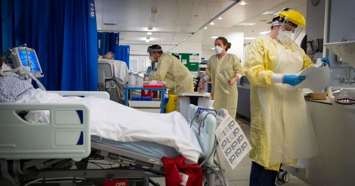 UK confirms highest daily death Covid toll since start of pandemic