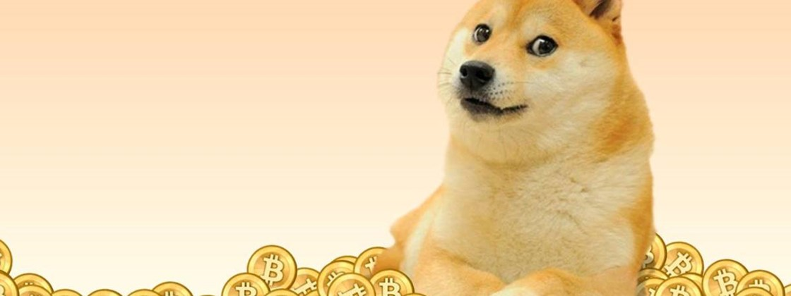 Elon Musk returns to Twitter and 'crowns' Dogecoin